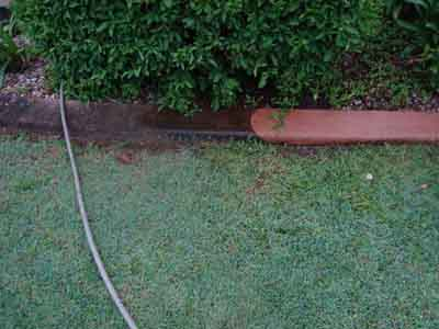 High pressure cleaning removes mould on concrete garden edges